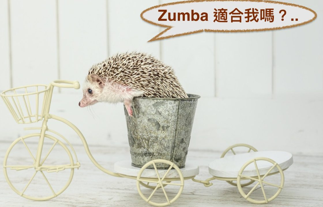 zumba_category_top_new